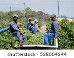 Stellenbosch   Feb 17  Black...
