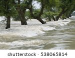 River Kosi Flood    India 4...