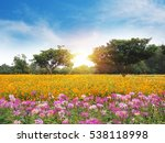 colorful flower meadow and blue ... | Shutterstock . vector #538118998