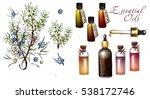 juniper essential oil in...   Shutterstock . vector #538172746