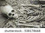 human skeleton in a museum | Shutterstock . vector #538178668