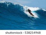 ponta d'ouro  mozambique   2...   Shutterstock . vector #538214968