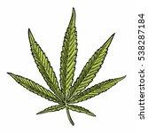 marijuana leaf. hand drawn... | Shutterstock .eps vector #538287184