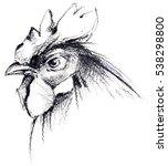 rooster pencil sketch | Shutterstock . vector #538298800
