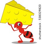 red ant carrying cheese