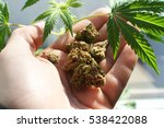 Marijuana Stock Photo High...