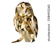 owl vector polygon geometric.... | Shutterstock .eps vector #538493260