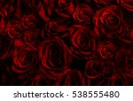 Stock photo natural red roses background greeting card with a luxury roses 538555480