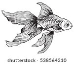 pen and ink drawing of a... | Shutterstock .eps vector #538564210