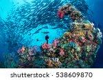 Wreck   Jack  Chuuk  Micronesia
