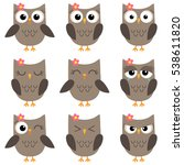 set of cute cartoon owls with... | Shutterstock .eps vector #538611820
