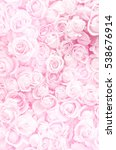 Stock photo blurred of sweet roses in pastel color style on soft blur bokeh texture for background 538676914