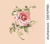 Watercolor Sketch Delicate Ros...