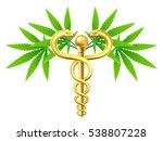 medical marijuana cannabis... | Shutterstock .eps vector #538807228