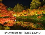 reflections of sutumn leaves at ... | Shutterstock . vector #538813240