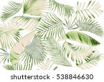 leaf of palm tree background | Shutterstock . vector #538846630
