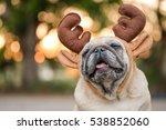 Funny Pug Dog Wearing Reindeer...
