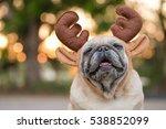 Stock photo funny pug dog wearing reindeer headband for christmas 538852099