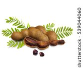tamarind with leaves on white... | Shutterstock . vector #539044060