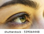the brown eye of a girl... | Shutterstock . vector #539064448
