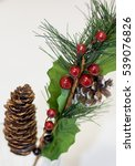 spruce branch with cones and... | Shutterstock . vector #539076826