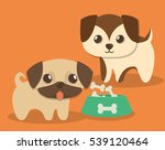dog pet care related icons...   Shutterstock .eps vector #539120464