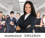 business. | Shutterstock . vector #539123014