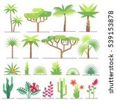 different types of tropical... | Shutterstock . vector #539153878