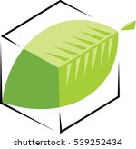 logo leaf in a cube   Shutterstock .eps vector #539252434
