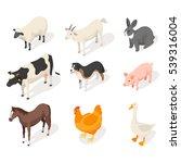 isometric 3d vector set of farm ... | Shutterstock .eps vector #539316004