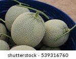 melon or cantaloupe fruit new... | Shutterstock . vector #539316760