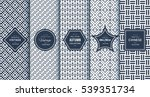 Blue line seamless pattern background. Vector illustration for elegant design. Abstract geometric photo frame. Stylish decorative bright label set. Fashion universal pattern. | Shutterstock vector #539351734