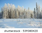 nature winter landscape on a... | Shutterstock . vector #539380420