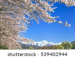 the snowy mountains and row of... | Shutterstock . vector #539402944