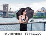 raining day   grainy  foggy ... | Shutterstock . vector #539411200