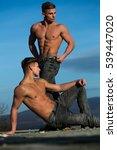 twin men or bodybuilders in... | Shutterstock . vector #539447020