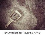 toilet cat cleaning sand cat | Shutterstock . vector #539537749
