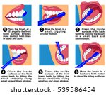 vector how to clean teeth... | Shutterstock .eps vector #539586454