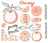 oranges  sketch.vector hand... | Shutterstock .eps vector #539635339