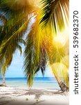 summer tropical beach  peaceful ... | Shutterstock . vector #539682370