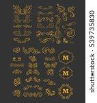 vintage elements for your... | Shutterstock .eps vector #539735830