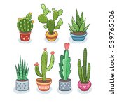 cactus and succulents in pots.... | Shutterstock .eps vector #539765506