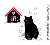 the stray cat outside  the cat...   Shutterstock .eps vector #539829640