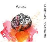 kumpir watercolor effect...   Shutterstock .eps vector #539860114