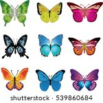 collection butterfly of... | Shutterstock .eps vector #539860684