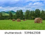 Small photo of Haystacks in a field. Round haystacks are on a large green meadow. In the background the beautiful mountains of the Altai mountains. Blue sky and white clouds. Russia