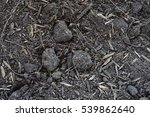 soil is a mixture of minerals ... | Shutterstock . vector #539862640