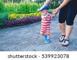 first steps of little adorable...   Shutterstock . vector #539923078