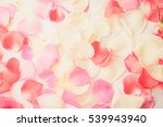 Stock photo sweet color roses in soft style on mulberry paper texture for background 539943940
