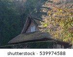 hida folk village in angle | Shutterstock . vector #539974588
